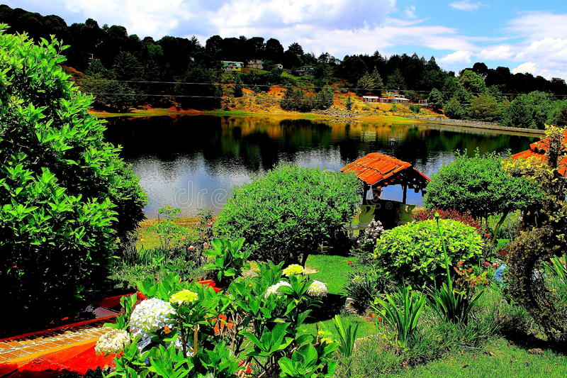 Ogród w jeziorze zdjęcia stock