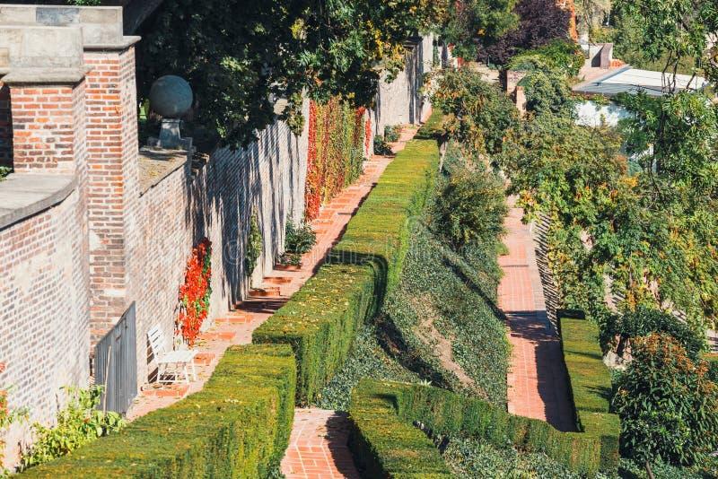 Ogród w Praga kasztelu jest wielcy pałac tarasu ogródy zdjęcia stock