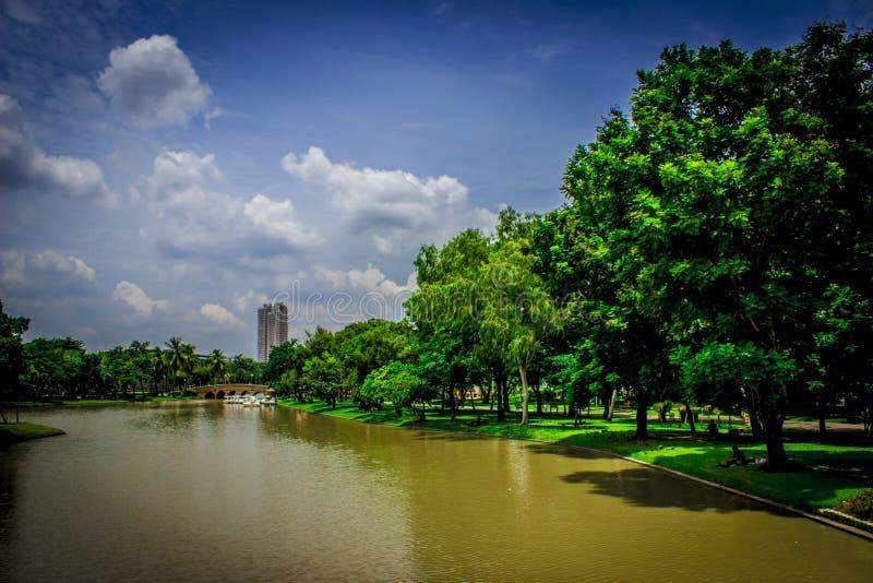 Ogród w Tajlandia Chatuchak 34 obraz royalty free