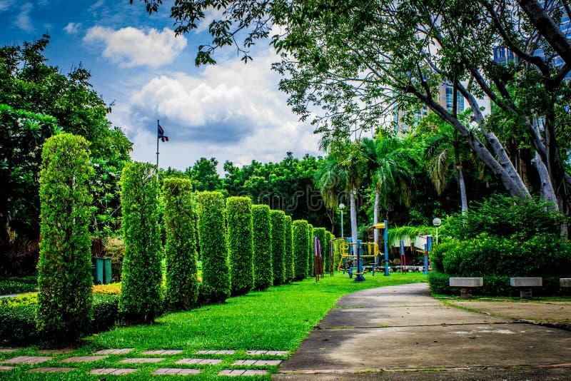 Ogród w Tajlandia Chatuchak 44 fotografia stock