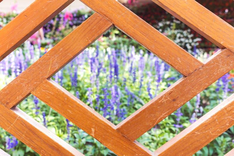 Ogród z pudełkiem i roślinami obraz stock