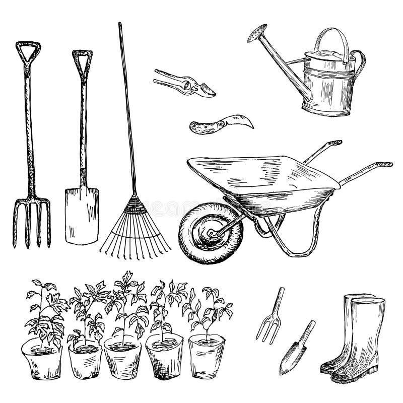 Ogródu set ilustracja wektor