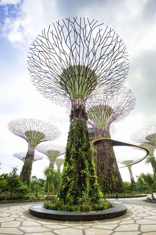 Ogródy Podpalanym Singapur fotografia royalty free
