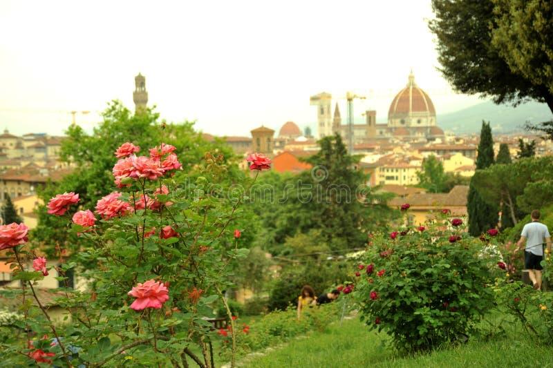 Ogródy różani w Florencja, Włochy obrazy royalty free