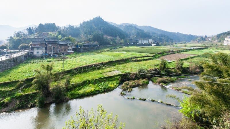 ogródy, ryżowi pola, herbaciana plantacja w Chengyang zdjęcie stock