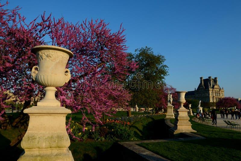 Ogródy Tuileries w Paryż obraz stock