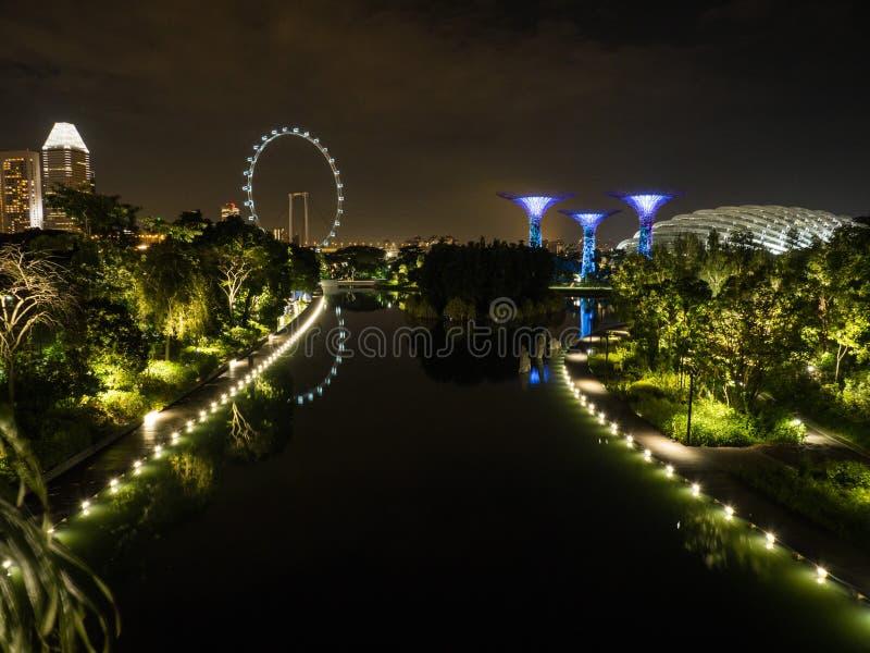 Ogródy zatoką i Singapur Flier przy nocą obrazy royalty free