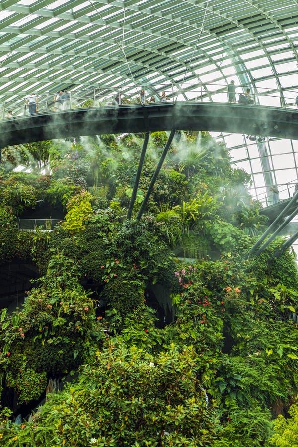 Ogródy zatoką, Obłoczna Lasowa kopuła Singapur zdjęcia royalty free
