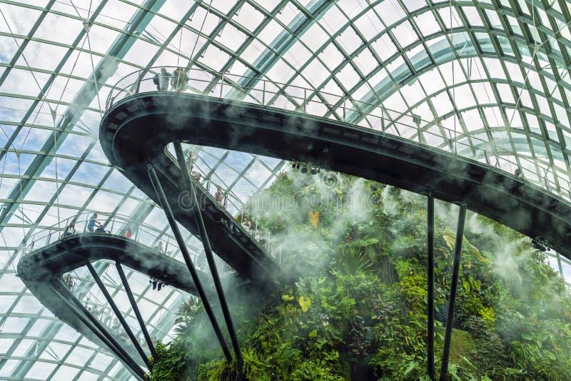 Ogródy zatoką, Obłoczna Lasowa kopuła Singapur zdjęcia stock