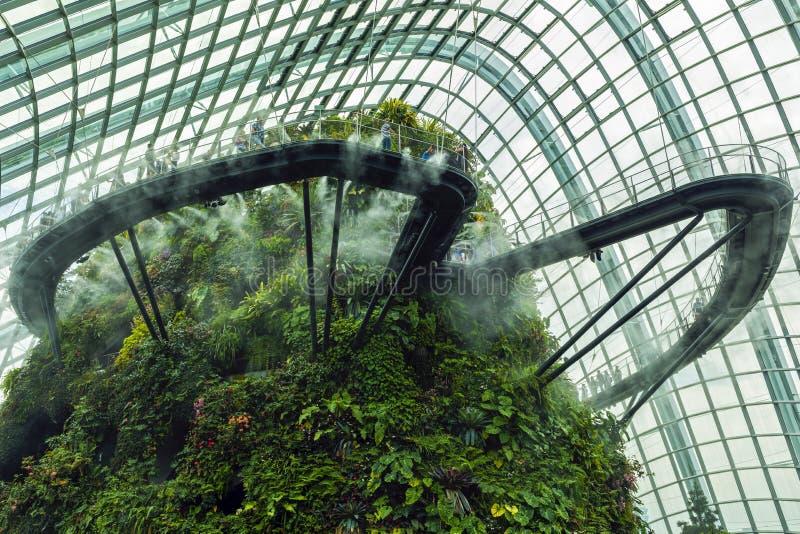 Ogródy zatoką, Obłoczna Lasowa kopuła Singapur zdjęcie stock