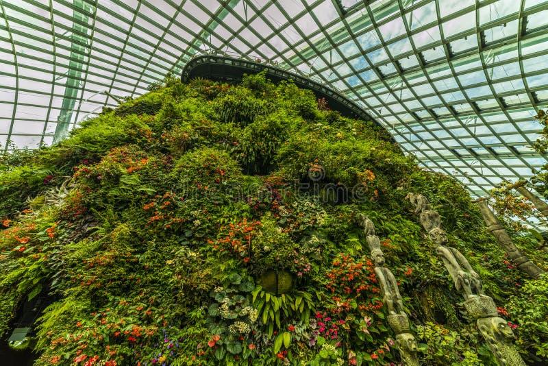 Ogródy zatoką, Obłoczna Lasowa kopuła Singapur obrazy royalty free