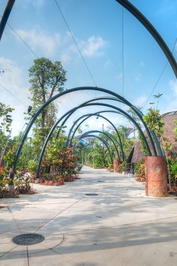 Ogródy Zatoką, Singapur obraz stock