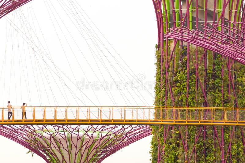Ogródy zatoką - Singapur obraz royalty free