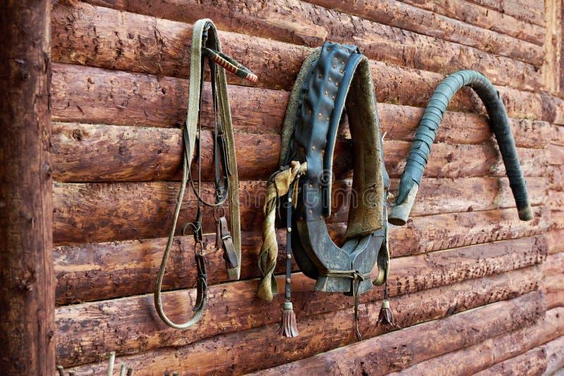 Ogranicza dla konia, nicielnica, kołnierz w wioska domu fotografia royalty free