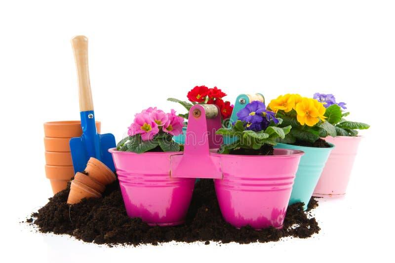 ogrodnictwo obrazy stock