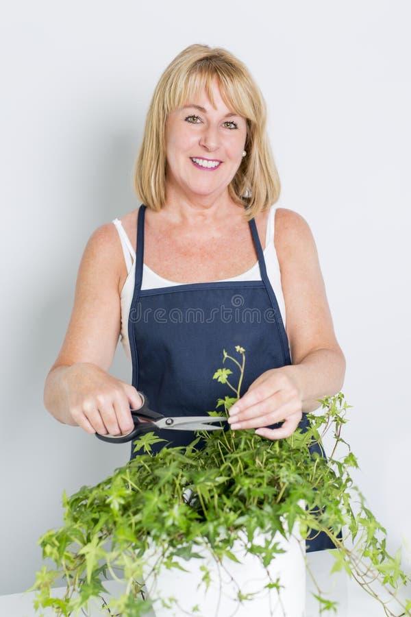 Ogrodnictwo kobieta z rośliną pojedynczy białe tło zdjęcia royalty free