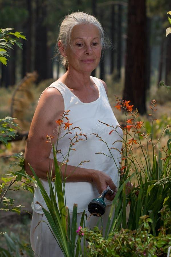 ogrodnictwo seniora kobieta fotografia stock