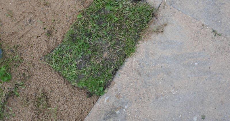 Ogrodnictwo, trawa kawałki, trawa darniuje przeszczep zdjęcia stock