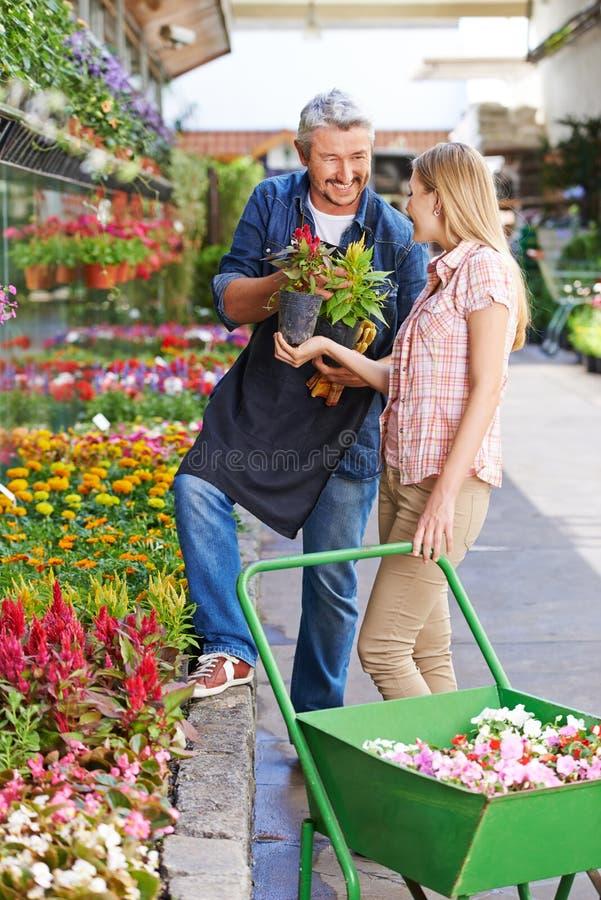 Ogrodniczka daje konsultaci klient zdjęcie stock