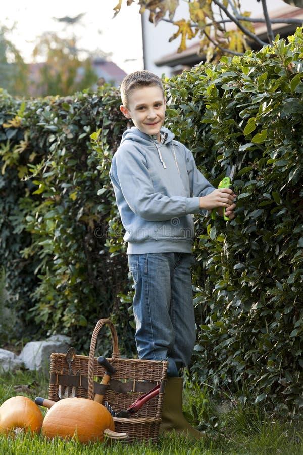 ogrodniczka trochę obraz royalty free