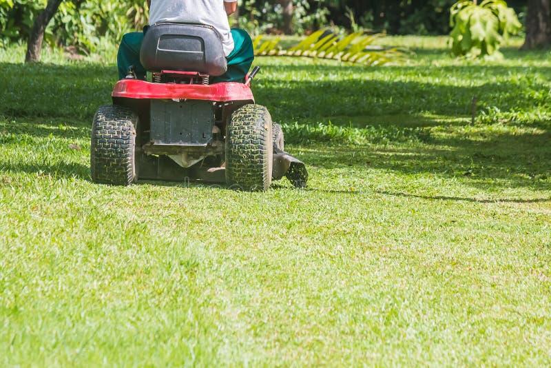 Ogrodniczka używa gazonu kosiarza zdjęcia stock