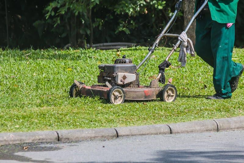 Ogrodniczka używa gazonu kosiarza zdjęcia royalty free