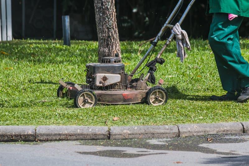 Ogrodniczka używa gazonu kosiarza fotografia stock