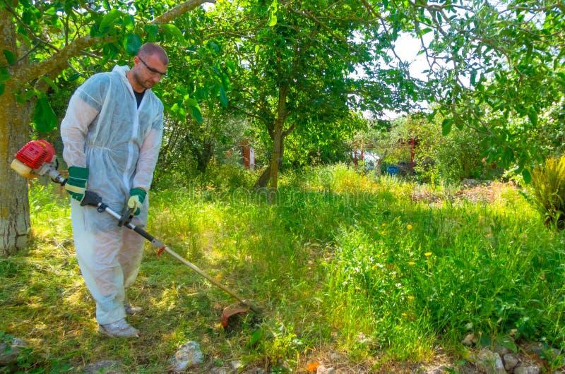 Ogrodniczka używa szczotkarskiego krajacza obraz stock
