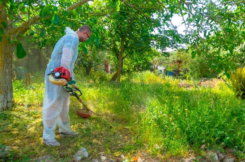 Ogrodniczka używa szczotkarskiego krajacza zdjęcia stock