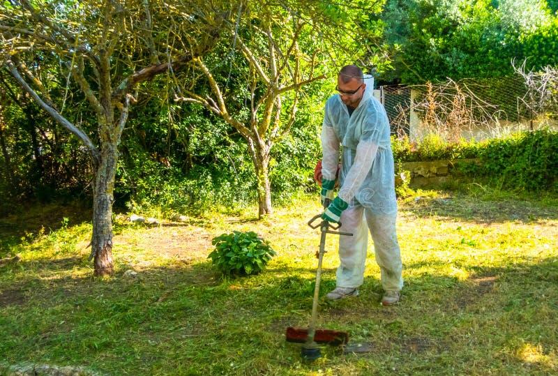 Ogrodniczka używa szczotkarskiego krajacza fotografia royalty free