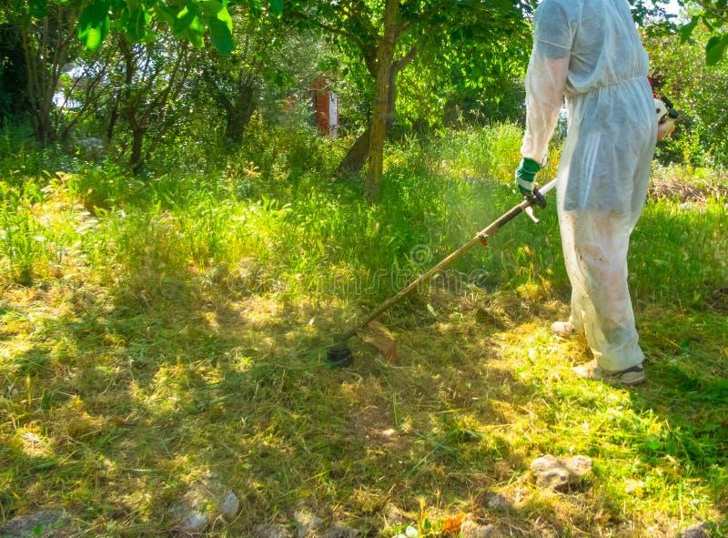 Ogrodniczka używa szczotkarskiego krajacza zdjęcie stock