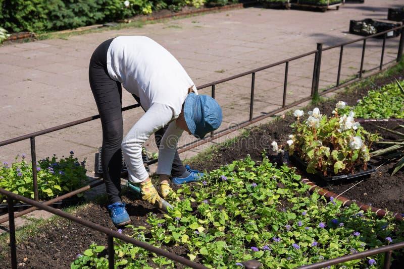 Ogrodniczka w miasto parku fotografia stock