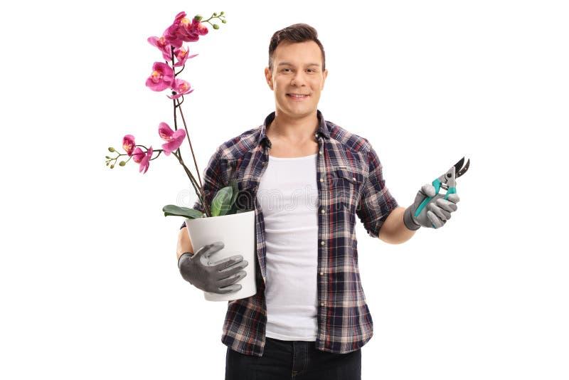 Ogrodniczka z storczykową rośliną ogrodowymi strzyżeniami i fotografia royalty free