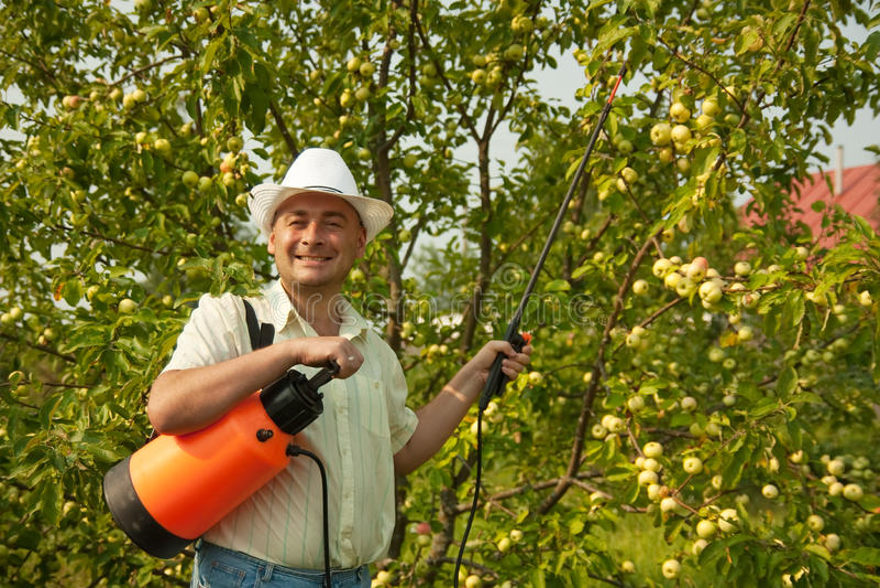 ogrodniczki dorosły działanie obraz royalty free