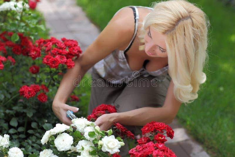 ogrodniczki kobieta zdjęcia stock