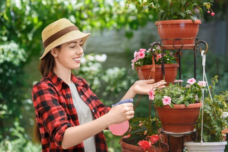 Ogrodniczki opryskiwania woda na kwiatach zdjęcia stock
