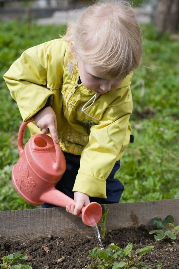ogrodnik trochę obraz royalty free