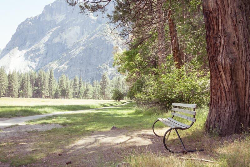Ogrodowa ławka na wycieczkuje śladzie w campingu w Yosemite Krajowym naturalnym parku zdjęcia royalty free