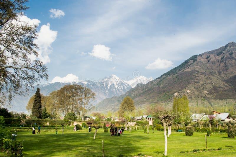 Ogrodowa błogość obrazy royalty free