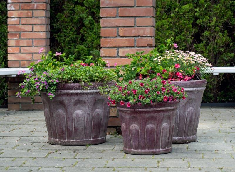Ogrodowa dekoracja, czerep ogród obrazy royalty free
