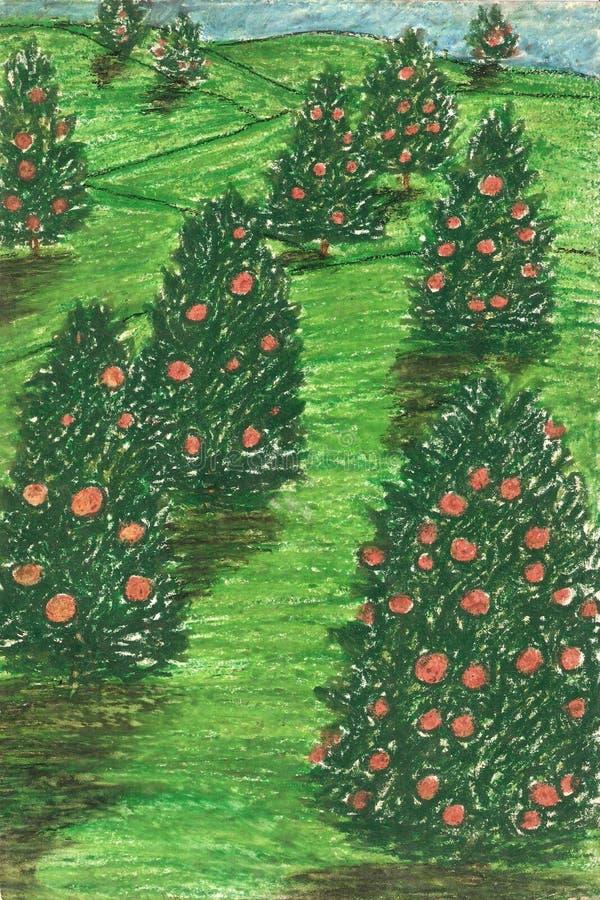 ogrodowa pomarańcze fotografia stock