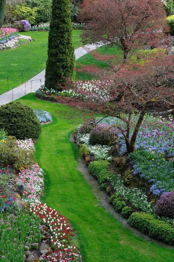 ogrodowa wiosna obraz stock