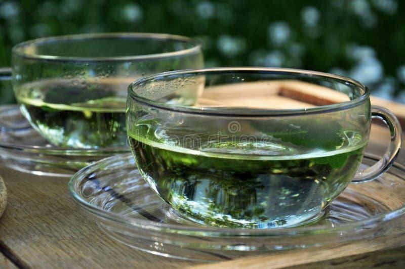 ogrodowa ziołowa herbata zdjęcie royalty free