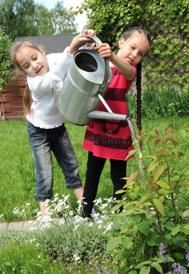 ogrodowe dziewczyny zdjęcie royalty free