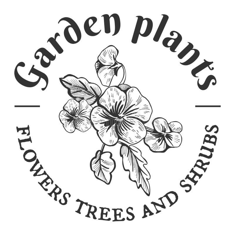 Ogrodowe rośliny, kwiaty, drzewa i krzaki, ilustracji