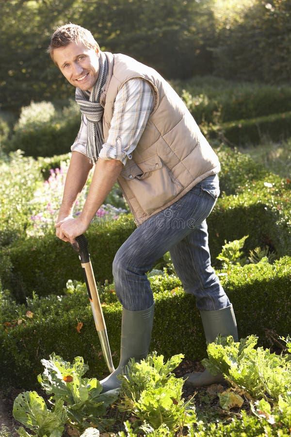 ogrodowego mężczyzna pracujący potomstwa zdjęcia royalty free