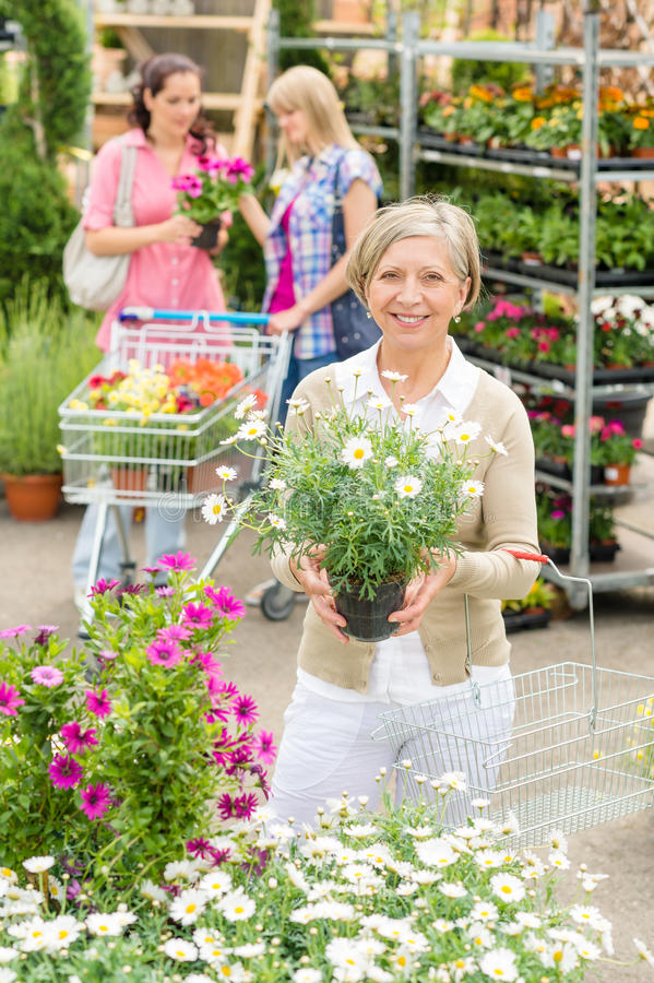 Ogrodowy centre starszy damy chwyt puszkujący kwiat zdjęcie stock