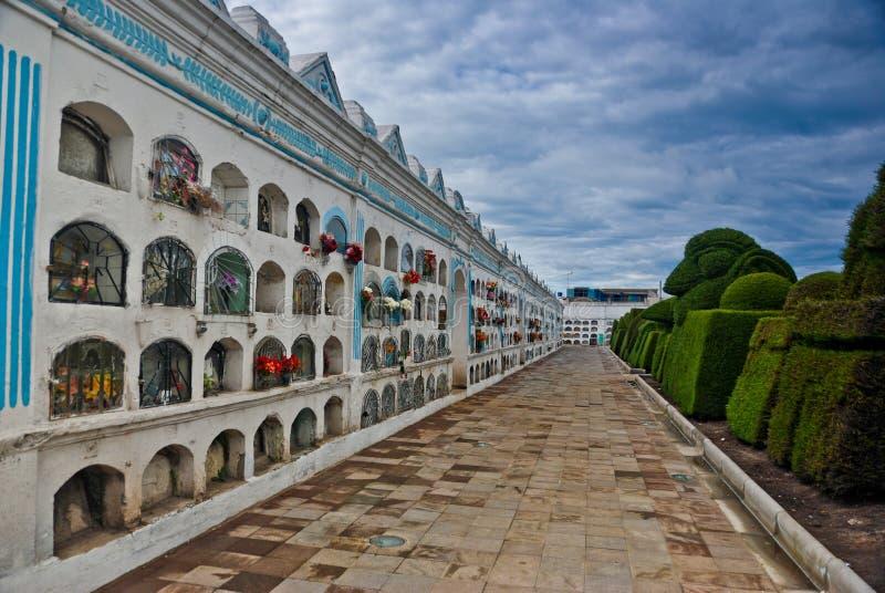 ogrodowy cmentarza topiary zdjęcie royalty free