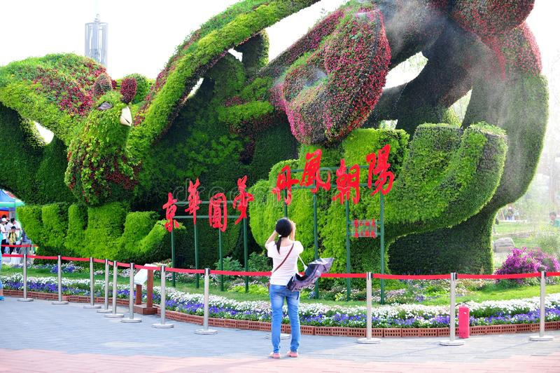 Ogrodowy expo zdjęcie stock
