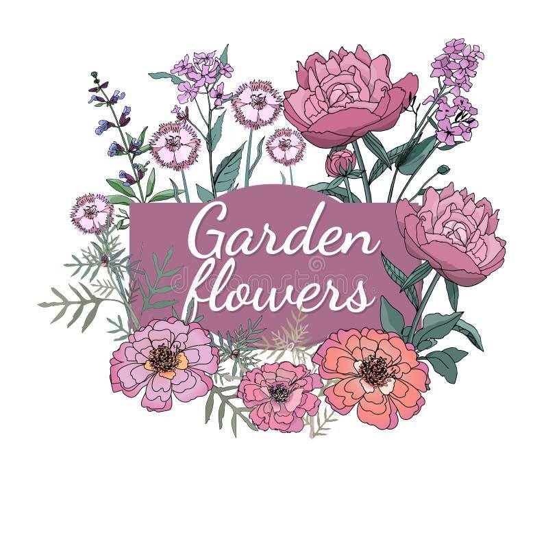 Ogrodowy flowers_4 ilustracji